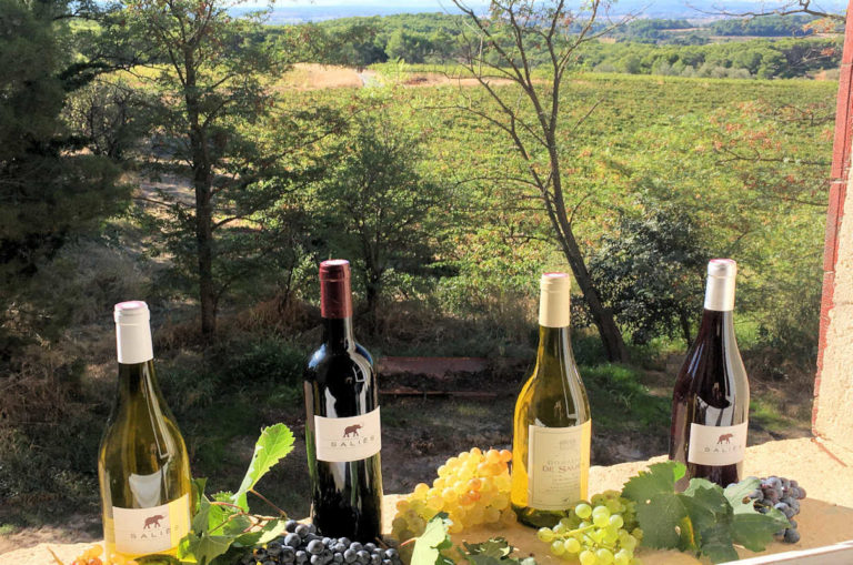 Les vins du domaine de Saliès