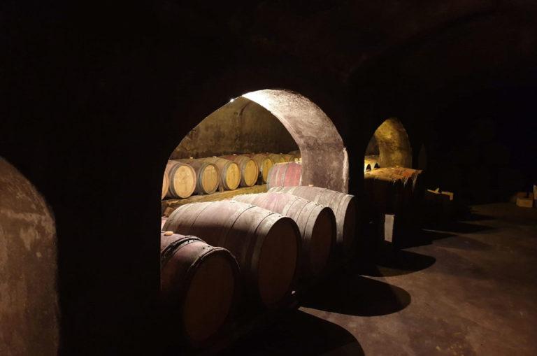 cave-vinfication-domaine-de-salies4